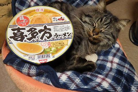 喜多方ラーメン猫セット