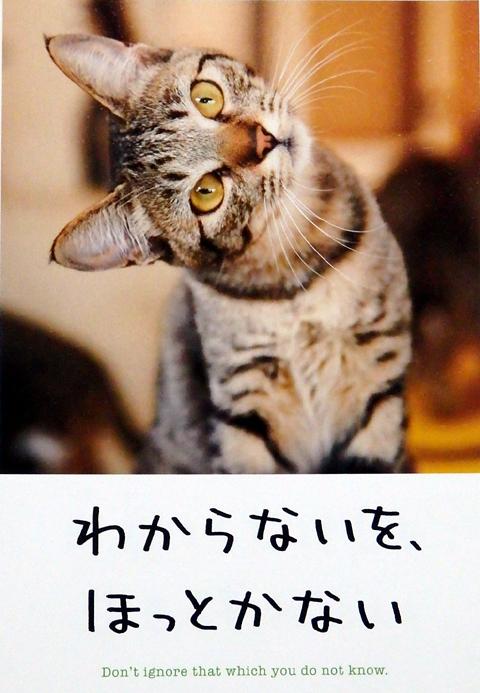 徳島ラーメン新崎人生