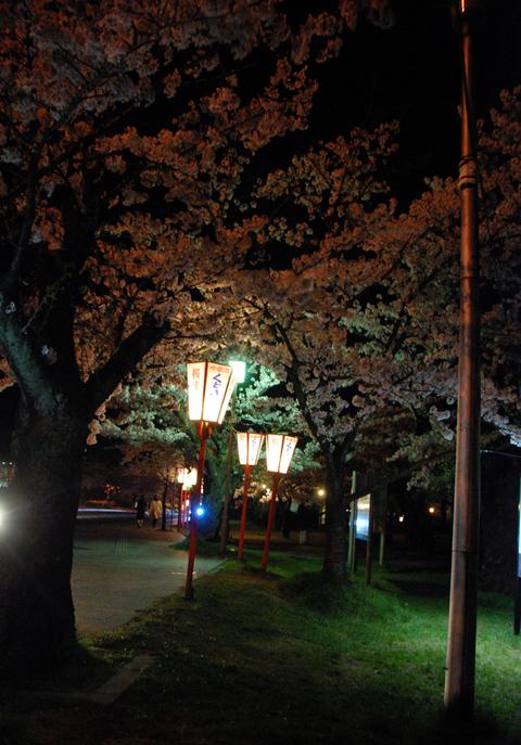 花見ラーメン鶴岡公園