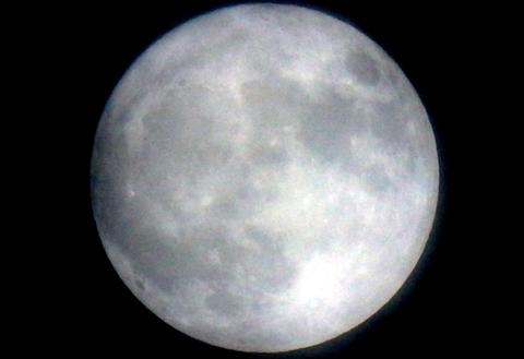 昨日の月ニャンコ