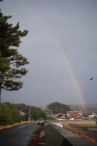 象潟漁港猫と虹