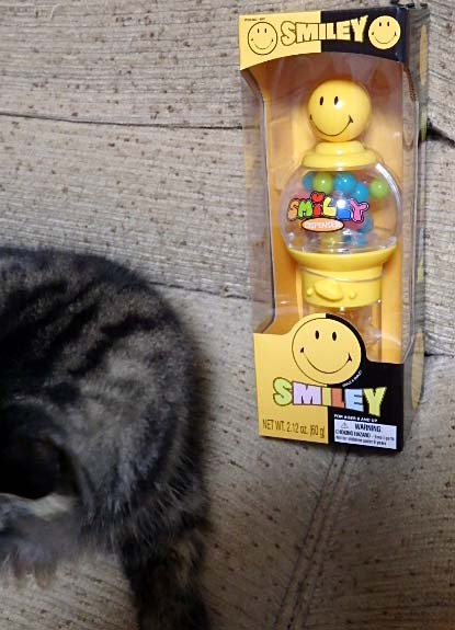 SMILEY ANGE