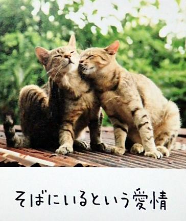鶴岡銀座鍋対決