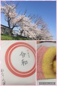 桜満開!&令和バームクーヘン