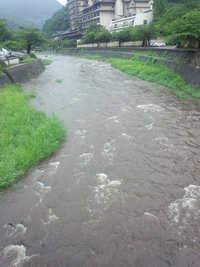 今日の川は・・・