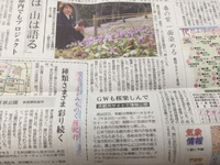 温海川かたくり園OPEN!