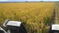HarvestTime ~収穫の時~