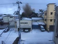 本日も暴風雪( ;´Д`)