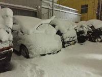 ものすごい雪  雪  雪Σ(・□・;)