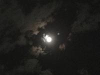 中秋の名月に泊りです(o˘◡˘o)