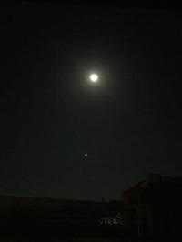 十六夜◯*・゜゚・*:.。..。.:* .。.:*・゜゚・*
