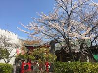 いいお天気(*゚▽゚*)