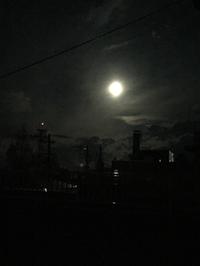 お月様が〜〜☆*:.。. o(≧▽≦)o .。.:*☆