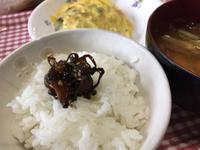 キュウリの佃煮(๑ ؔ◉͡ ◡͐ؔ◉͡ ๑)
