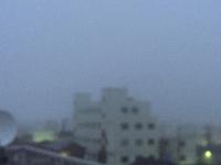 濃霧の酒田(*☻-☻*)