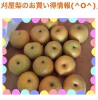お買い得情報(((o(*゚▽゚*)o)))♡