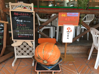 秋ですの〜〜٩(๑❛ᴗ❛๑)۶