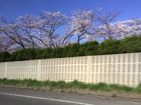 山形にGO(*'▽'*)