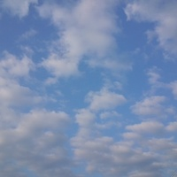 ★絵に描いたような・・・★ 2012/07/10 06:11:01