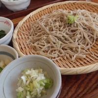 ★ふぞろいなお蕎麦達(*´∇`*)★ 2012/07/30 20:47:23