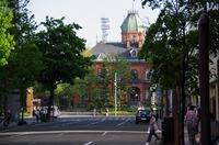 恋の町札幌散策♡