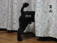 賀正2018