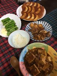 麻婆豆腐&餃子