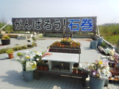 仙台七夕まつり 石巻の復興応援