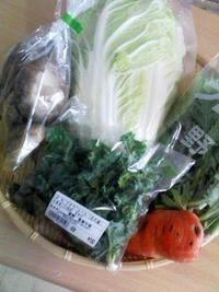 野菜お届けします