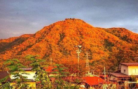 ◇第239話◇秋盛りの三吉山