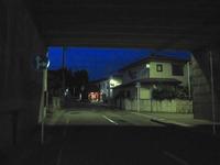 ◆第228話◆夜散歩が気持ちいい