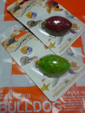 ☆亀コレクションNo.6☆