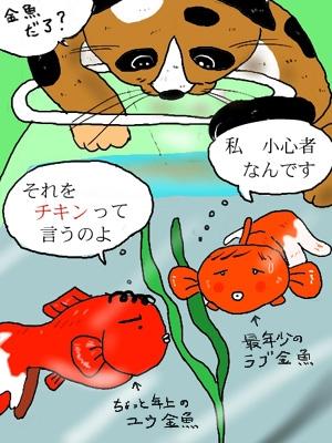 ☆金魚なふたり☆