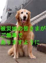 東日本大地震の募金サイト情報