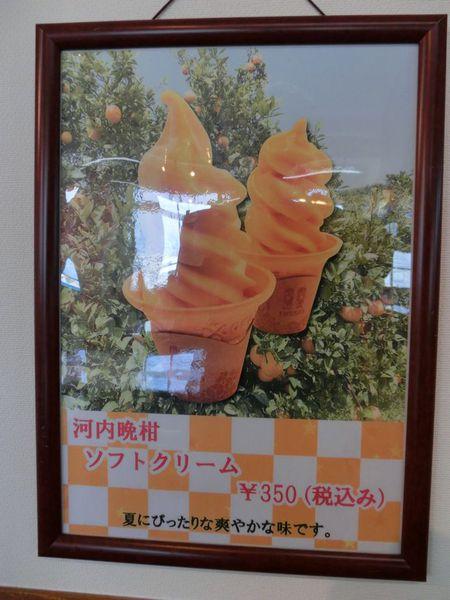 河内晩柑ソフトクリーム♪