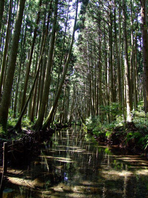 九月二日の牛渡川