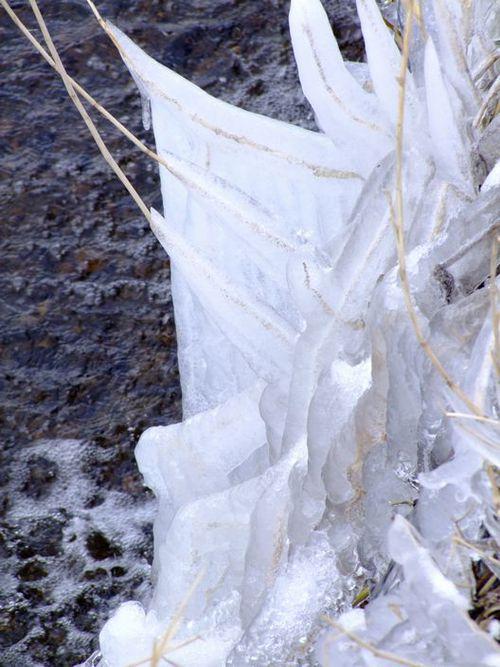 しぶき氷♪
