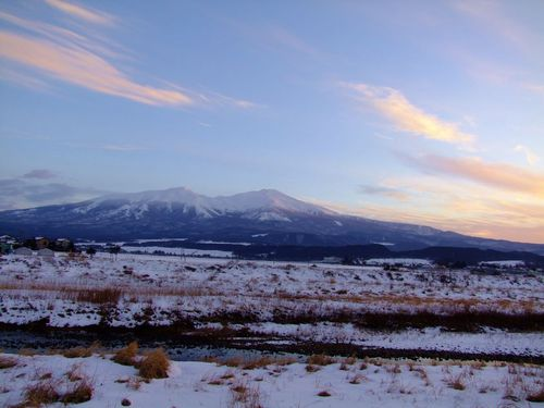 凍てつく朝の散歩道