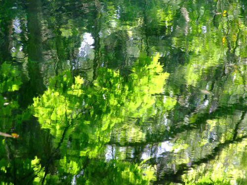五月半ばの丸池様