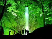 玉簾の滝 夏のライトアップ'15