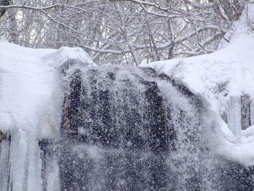 今朝の玉簾の滝♪