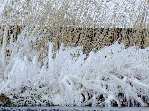 しぶき氷☆