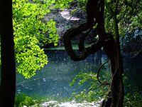 八月午後の丸池様