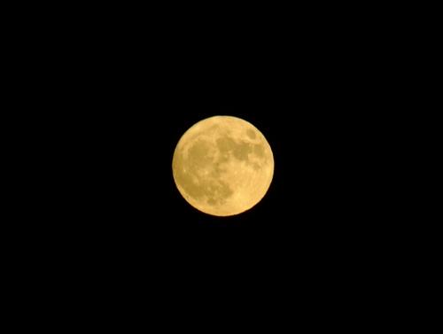 超月いでる!