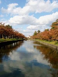 鶴岡公園の秋