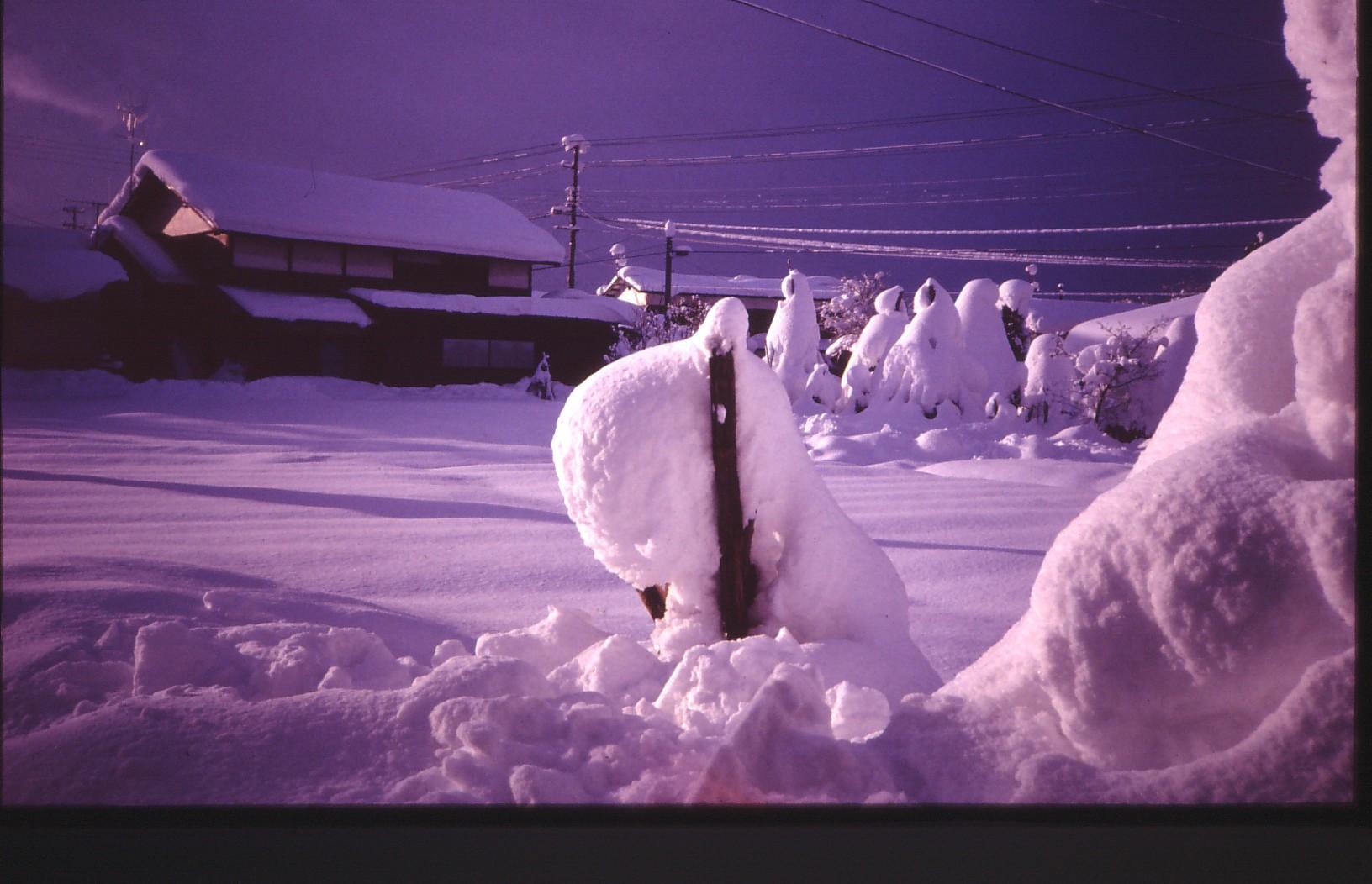 新庄の雪景色