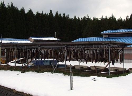 師走の牛渡川