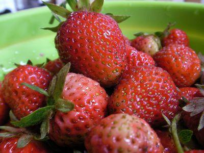 朝の苺と朝露と