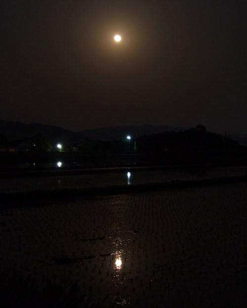 水鏡の満月