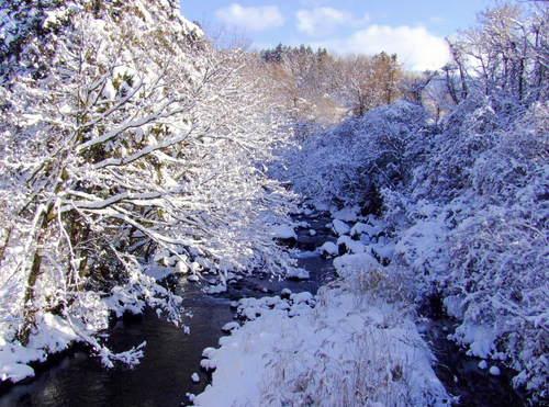 廣畑橋 雪景色